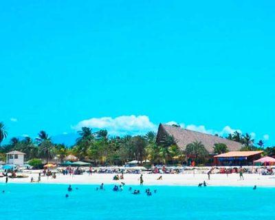 Paradise Coche -